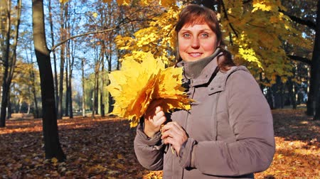 brune : nice woman stands sideways and holds in her hands yellow leaves at beautiful autumn city park
