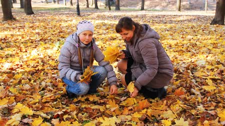 brune : nice woman sits squatted, to her approaches teen daughter and they collect yellow leaves in beautiful autumn city park
