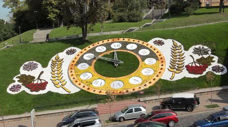 ornament kwiatowy : timelapse and real time famous large floral clock at center Kiev, Ukraine, consists of 80 thousand flowers