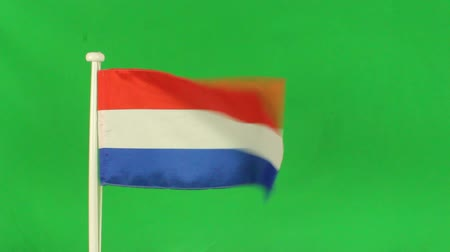 holandês : Flag of Netherlands with green screen
