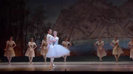 adolphe charles adam : DNIPRO, UKRAINE - FEBRUARY 17, 2017: Classical ballet Giselle performed by members of the Dnipro Opera and Ballet Theatre.