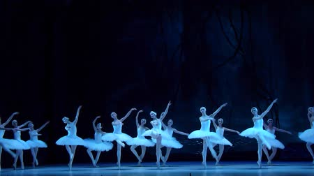 bale : DNIPRO, UKRAINE - APRIL 22, 2017: Classical ballet Swan Lake performed by members of the Dnipro Opera and Ballet Theatre. Stok Video
