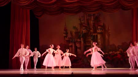 senfoni : DNIPRO, UKRAINE - JANUARY 6, 2018: Nutcracker ballet performed by members of the Dnipro Opera and Ballet Theater ballet. Stok Video
