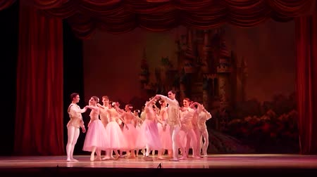 ornamentální : DNIPRO, UKRAINE - JANUARY 6, 2018: Nutcracker ballet performed by members of the Dnipro Opera and Ballet Theater ballet. Dostupné videozáznamy