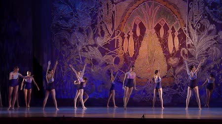 toco : DNIPRO, UKRAINE - JANUARY 8, 2018: Unidentified girls, ages 13-16 years old, perform I remember only a bright day at State Opera and Ballet Theater. Vídeos