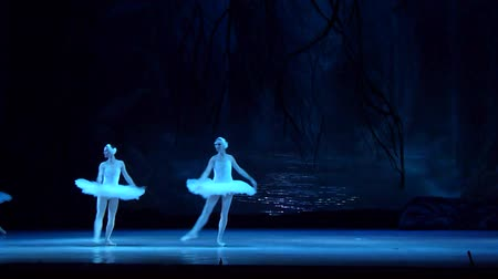 baletnica : DNIPRO, UKRAINE - MARCH 17, 2018: SWAN LAKE ballet performed by members of the Dnipro State Opera and Ballet Theater.