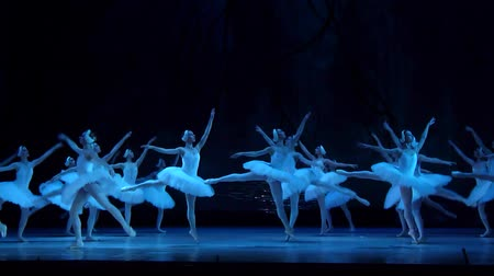 cisne : DNIPRO, UKRAINE - MARCH 17, 2018: SWAN LAKE ballet performed by members of the Dnipro State Opera and Ballet Theater.