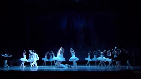 cradle : DNIPRO, UKRAINE - MARCH 17, 2018: SWAN LAKE ballet performed by members of the Dnipro State Opera and Ballet Theater.