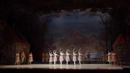 beeldje : DNIPRO, OEKRA�NE - 3 NOVEMBER 2018: Klassiek ballet door het Opera en Ballet Theater. Stockvideo
