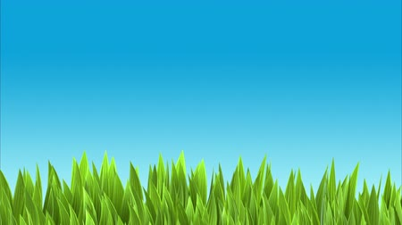 jardim : Background with lush green grass and blue sky.