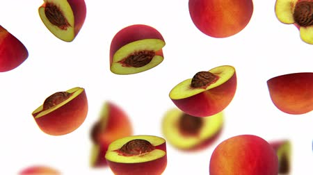 brzoskwinia : Sections of peach falling on white background, alpha channel, CG