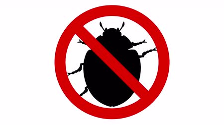 taboo : Beetle pest in prohibited sign, CG animation