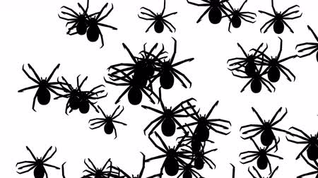 korkunç : Invasion of hordes of spiders. Crowd of creepy arthropods runs on a white background, black silhouettes fill the screen and turn into a black backdrop, 3D animation. Stok Video