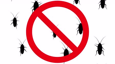 obnoxious : Cockroaches in prohibition sign. Black silhouettes of pests creep up on white background. Seamless loop 3D animation.