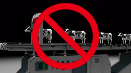 cruelty : Cows fall into a meat grinder, 3d animation in prohibition sign.