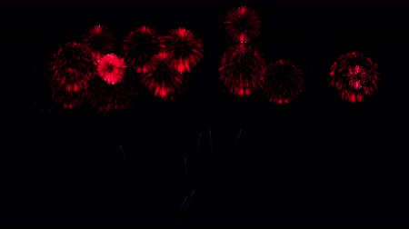 consecutivo : Colorful fireworks at night. Spectacular firecrakers 3d render. Red version 27