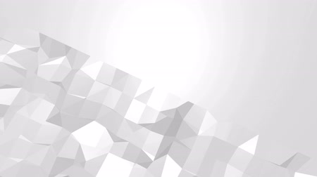 demonstrativní : Abstract black and white low poly waving 3D surface as stylish 3D background. Grey abstract geometric vibrating environment or pulsating background in cartoon low poly 3D design. Free space