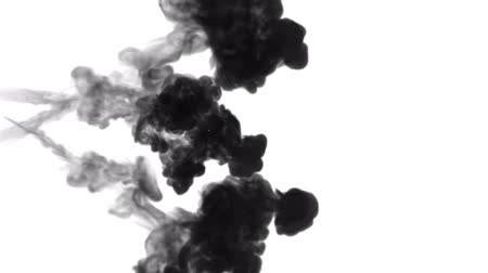 into focus : A lot of flows, black clouds or smoke, ink inject is isolated on white in slow motion. Black paint curls in water. Inky background or smoke backdrop, for ink effects use luma matte like alpha mask Stock Footage