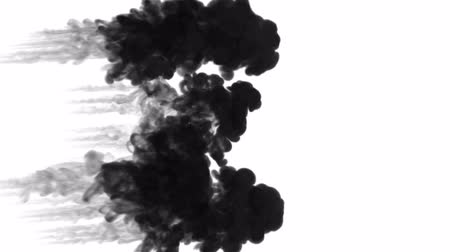 psychadelic background : black ink inject in water on white background. 3d animation with luma matte as alpha channel in slow motion. Use for ink effect, transition or beautiful colorful background. A lot of ink flow. V2 Stock Footage
