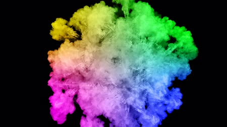 bomba : fireworks from paints isolated on black background with nice trails. explosion of colored powder or ink. juicy creative explosion of all colors of the rainbow in the air in slow motion. 34