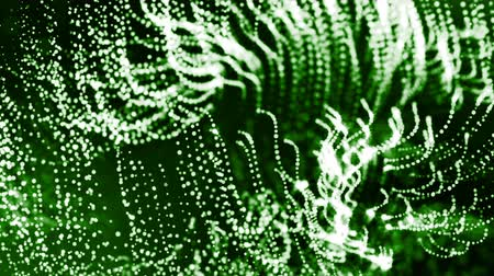 interruptor : 4k 3d render of glow particles as abstract seamless dynamic background with depth of field and bokeh. Science fiction or microcosm, space or digital abstract space. 3d loop animation. Green strings 18