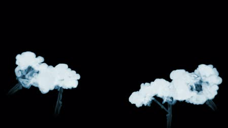 gush : 3d animation of beautiful smoke on a black background for visual effects with smoke. V8 Stock Footage