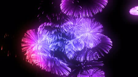 firecracker : consecutive fireworks volleys isolated on black background. 3d animation 3d render close up view. Multicolored 8 Stock Footage