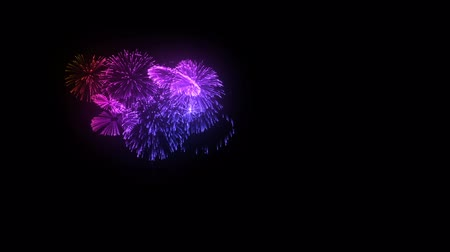 detail : multiple volleys of fireworks isolated on black background. 3d animation 3d render. Multicolored complex fireworks 3