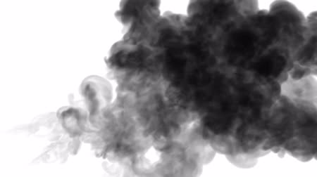 visual effect : 3d render black ink in water on white background with luma matte as alpha mask for ink effects or background. 1 Stock Footage