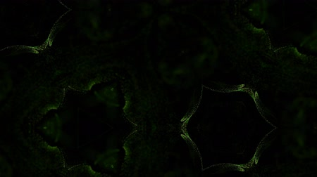 jak : Abstract particles background. 4k luminous particles move in liquid flow form kaledoscopic structures. Ink effect with luma matte as alpha channel. Glow green particles on black background 17
