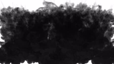 kiloccsantás : 3d render of black ink dissolves in water on white background with luma matte as alpha channel for visual effects and easy compositing. 6