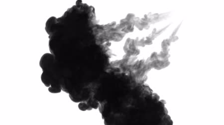 kiloccsantás : 3d render of black ink dissolves in water on white background with luma matte as alpha channel for visual effects and easy compositing. 18