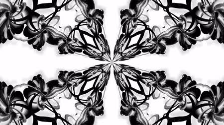 ornamento : 4k loop animation with black and white ribbons are twisting and form complex structures as kaleidoscopic effect. 15