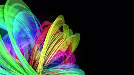 kisebbség : transparent colored lines with a neon glow on a black background. Motion graphics 3d looped background with multicolor colorful rainbow ribbons. Beautiful seamless background in motion design style 27 Stock mozgókép