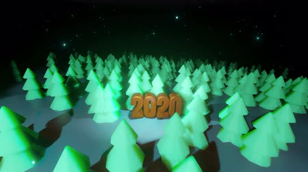 time year : Beautiful Christmas background for new year with golden text 2020. 3d render background night coniferous forest in cartoon style like toys. Many Christmas trees in the night are highlighted.