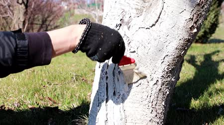 resistant : pest-proof painting of a garden tree