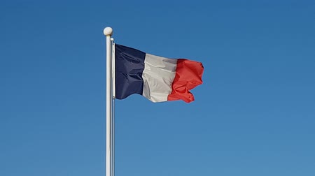 north korean flag : French Flag Waving in Air of South Korea.