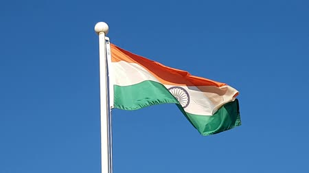 bandeira : Indian Flag Waving in Air of South Korea. Vídeos
