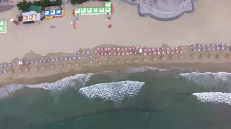 日傘 : Aerial View of Cloudy Summer Morning of Gwangalli Beach, Busan, South Korea, Asia 動画素材