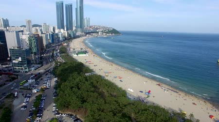 parasol : Aerial View of Sunny Summer Haeundae Beach, Busan, South Korea, Asia