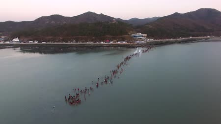 peoples : Aerial View of Jindo Myterious Sea Route, Jindo, Jeonnam, South Korea, Asia. Stock Footage