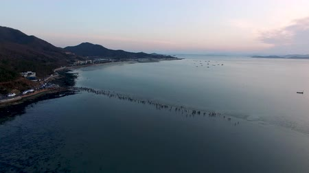 lenda : Aerial View of Jindo Myterious Sea Route, Jindo, Jeonnam, South Korea, Asia. Stock Footage