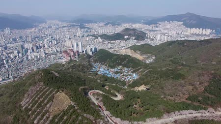 Aerial View of Cherry Blossoms Blooming in Geumryeonsan Mountain, Busan, South Korea, Asia.