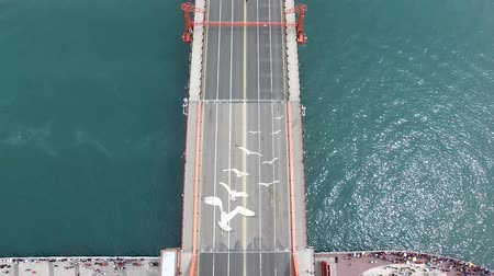 peoples : Aerial View of Yeongdodaegyo Bridge, Busan, South Korea, Asia. Stock Footage