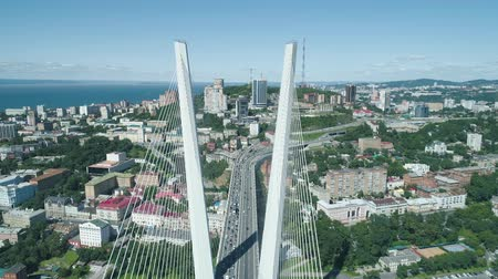 pilon : Aerial drone view of The Zolotoy Golden Bridge. Cable-stayed bridge across the Zolotoy Rog (Golden Horn) in Vladivostok, Russia Stock mozgókép