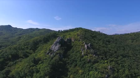 waterways : Aerial view of the tall mountain covered by the forest on sunny day Stock Footage