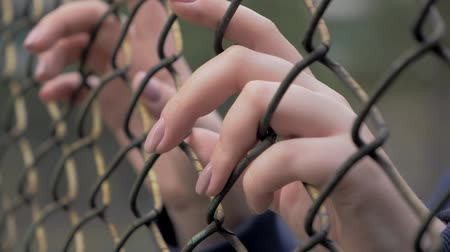 бездомный : Close-up view of young womans hands grabing metal mesh at fenced area. Стоковые видеозаписи