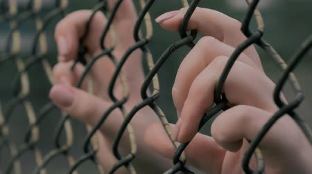 megragad : Close-up view of young womans hands grabing metal mesh at fenced area. Stock mozgókép