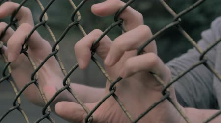 perimeter : Close-up view of young mans hands shaking metal mesh at fenced area. Helpless man shaking a metal fence trying to escape.