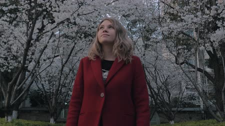 аромат : Attractive blonde girl in a red coat walking the sakura alley, enjoying the scent of blooming trees. Стоковые видеозаписи